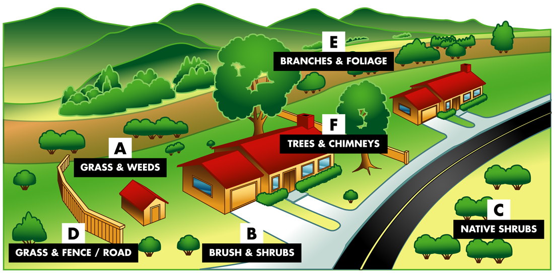 graphic illustrating brush clearance guidelines