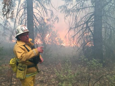 LAFD Battalion Chief at a wildfire