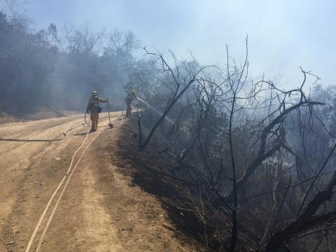 Firefighter using handline to put water on smoldering brush
