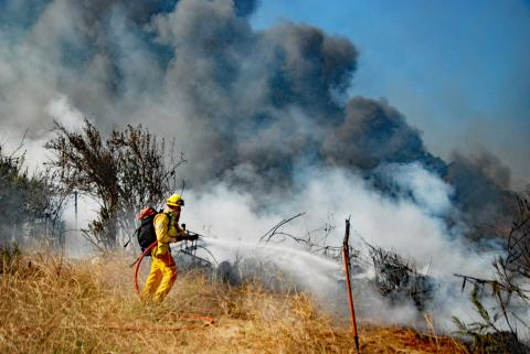 A Los Angeles Firefighter douses flames in the Sepulveda Basin on July 30, 2019