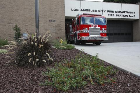 Front view of fire station 3 with drought resistant plants
